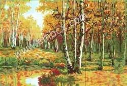 金色白桦林
